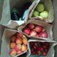 NEL voće dostava