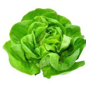 Salata - puterica